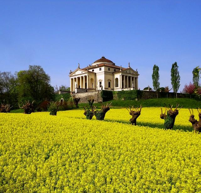 Palladio - la Rotonda (in fiore), Vicenza