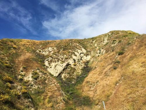 california palmsprings desert hills mountains wildflowers superbloom hillside landscape nature skyline clouds