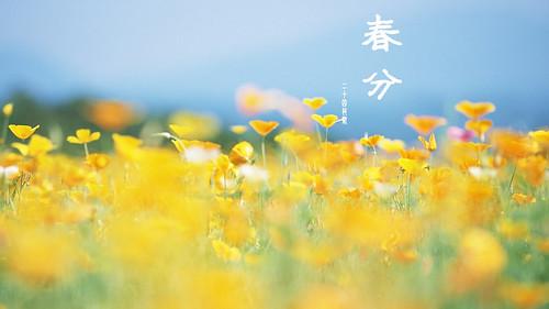 春分 | by bangdoll@flickr