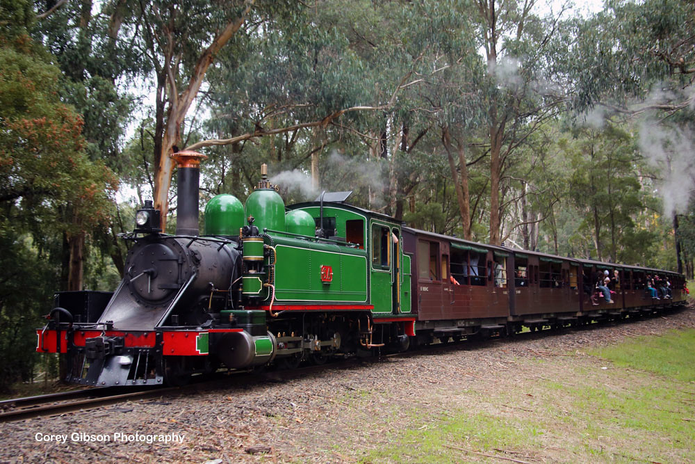 Puffing Billy Railway - 8A Locomotive by Corey Gibson