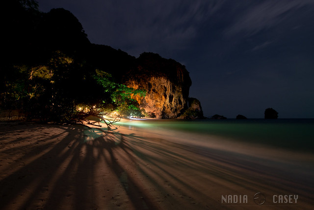 Tree In The Light  -  Railay, Thailand