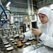 Egypt ice cream factory investment - 2013