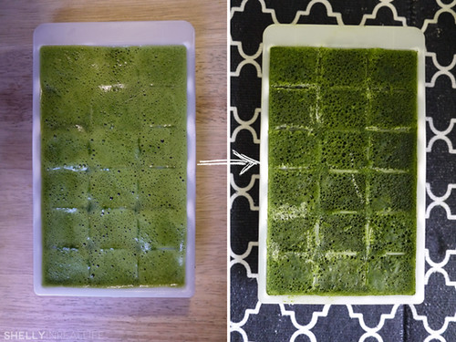 frozen_kale_cubes_03_in_tray | by shellyinreallife