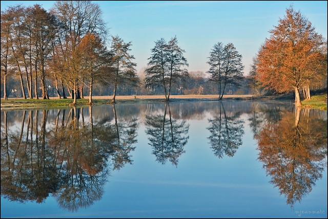 Un reflet sur l'eau