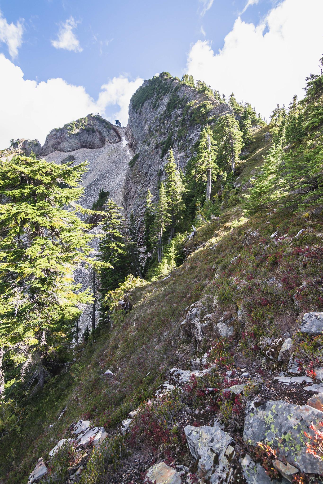 Lewis Peak summit within reach