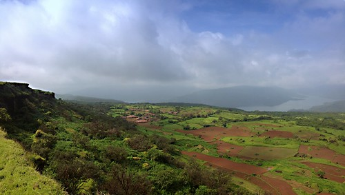 flower trek plateau monsoon satara kas kaas sahyadris rajghad ratanghad uploaded:by=flickrmobile flickriosapp:filter=nofilter chalkewadiwindmill