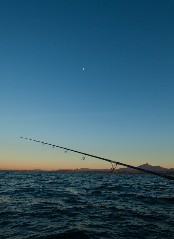 https://www.twin-loc.fr Pêche et lune - Fishing and moon - http://www.yakapecher.com