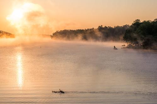 fishing fog geese lake landscape sunrise waterscape hotspringsvillage arkansas