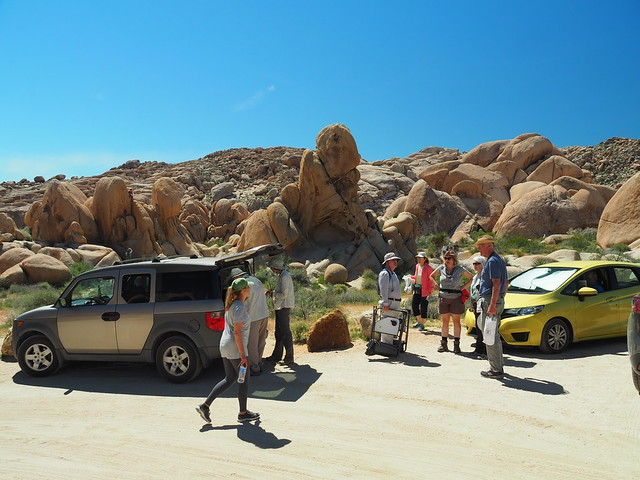 Q3267342 Joshua Tree National Park Stirrup Tank parking
