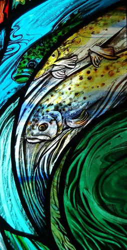 river trout | by stainedglassartist