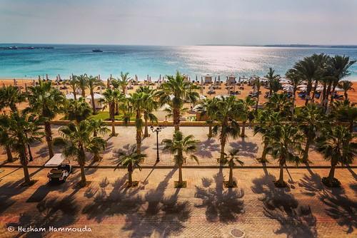 egypt sahl hashees beach sea sun