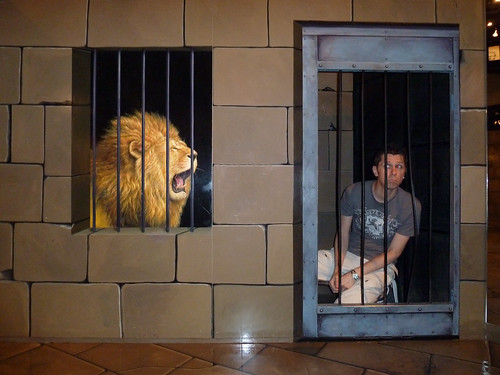 Caged Animals @ Trick Art Museum   by Rob Young