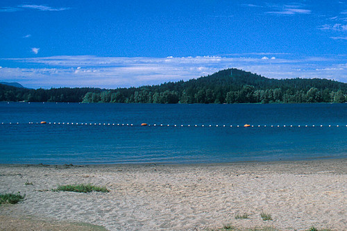 Elk Lake in Elk/Beaver Lake Park, Saanich, Victoria, Vancouver Island, British Columbia, Canada