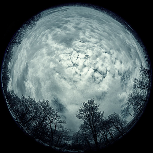 landscape winter fisheye nature dawn harrimanpark city 2016 weather snow trees harrimanstatepark outside circular outdoors newyork morning harriman sunrise unitedstates sky plants clouds southfields us