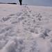 Snow by randallvangurchom