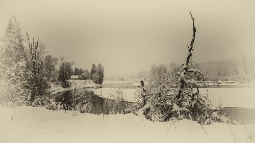 winter bw snow nikon nordic backroad odc slocanvalley d7000 perrysbridge perryssiding