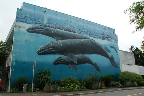Whale Mural, White Rock, Semiahmoo Peninsula, Greater Vancouver, British Columbia, Canada