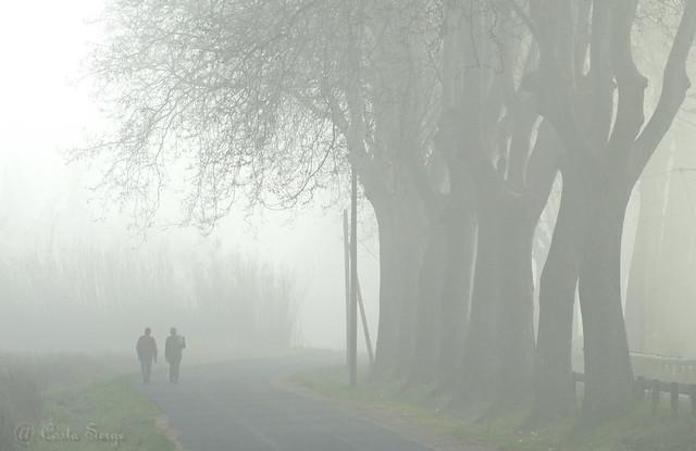 Marcheurs dans la brume. Explore.