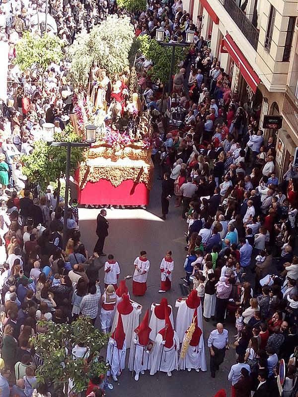 Borriquilla (Domingo de Ramos 2017)