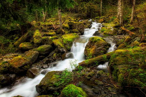 changecreek boulders creek moss