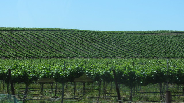 IMG_2826 rural santa barbara county landscape views from car