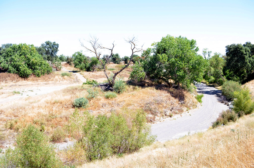 a dry levee system 130715aqe256022 � the levee system