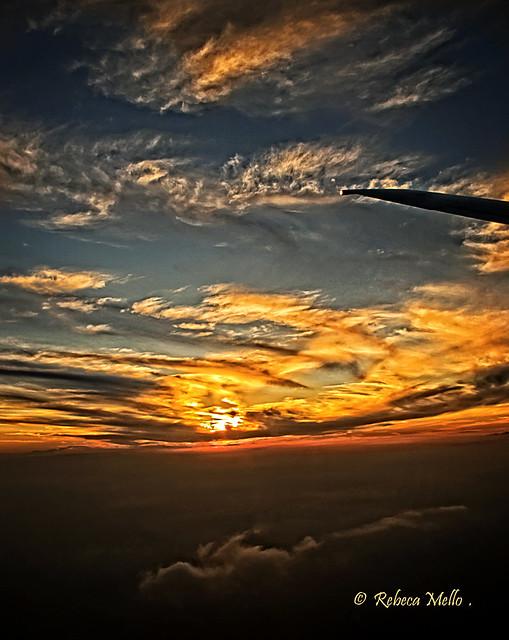 The sun how travel companion..
