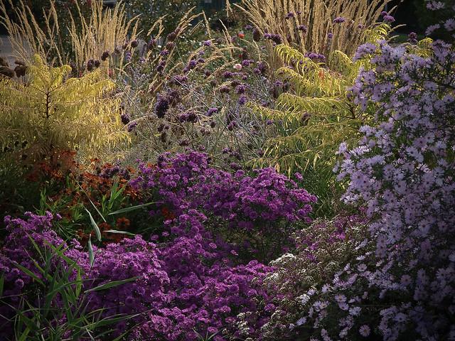 Makin'Gardens @2013