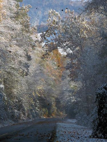 landscape northcarolina blueridgeparkway westernnorthcarolina southernappalachians canonpowershotsx40hs