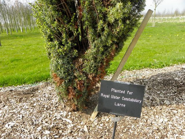 Memorial for Larne RUC at the National Memorial Arboretum