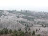 Čerchov – výhled z rozhledny na vrcholu, foto: Petr Nejedlý