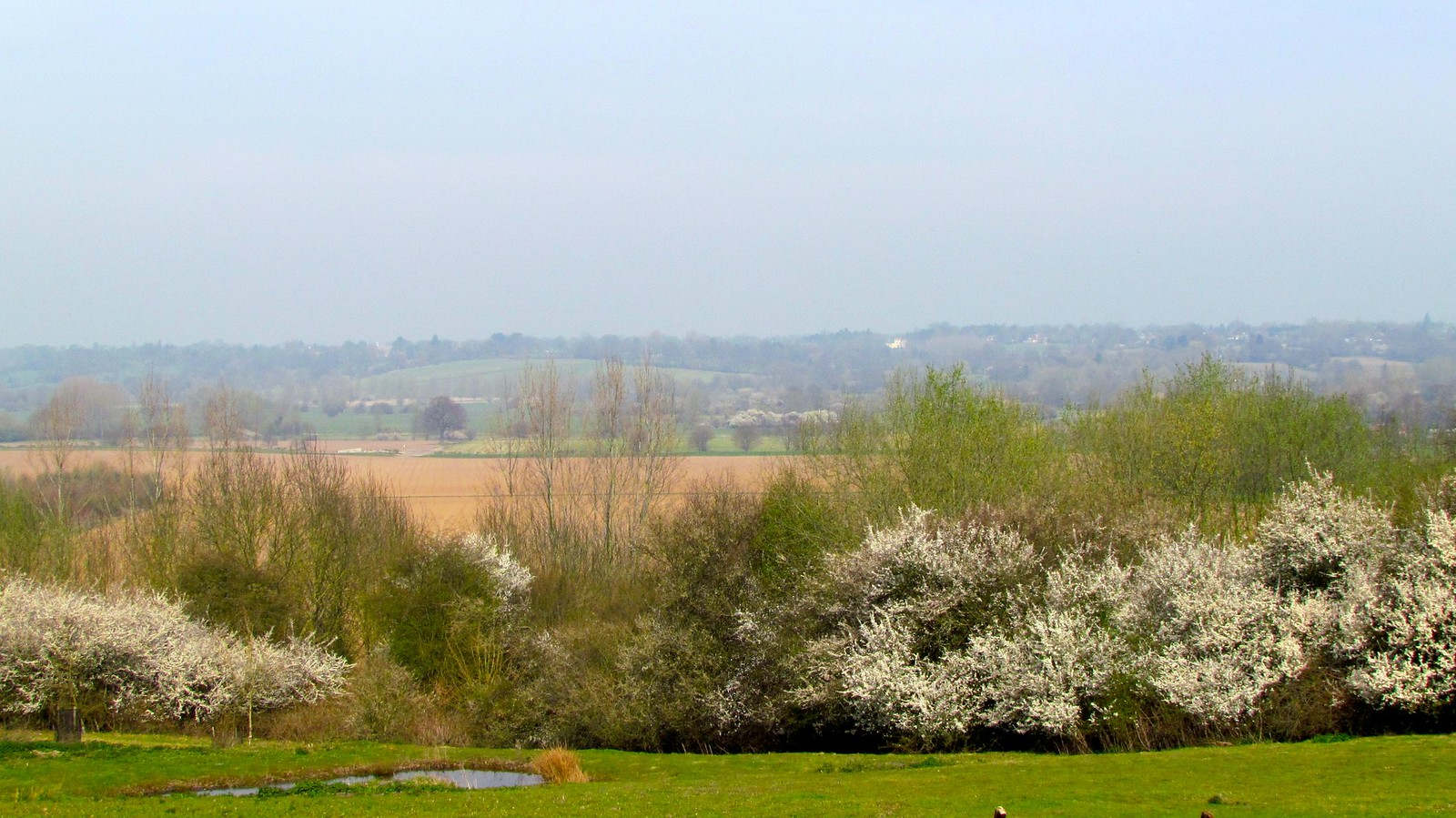 photo from walk Stour Valley