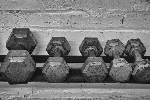 Weight Training 102 of 365 (4) | by bleedenm