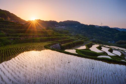 morning japan sunrise clear cloudless saga kyushu tanada arcreyes ourariceterraces