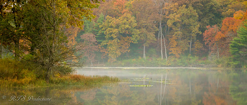 wood autumn trees fall nature water leaves sunrise canon landscape outdoors morninglight pond october cloudy overcast 7d cloudysky buschwildlife canon7d canon1585mmlens