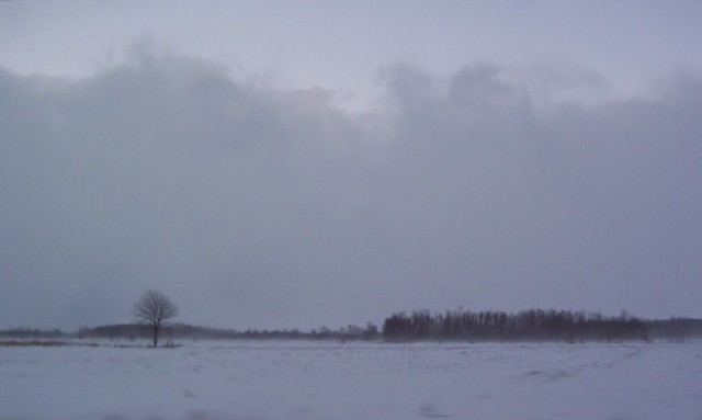 Intense Lake Effect Snow Band