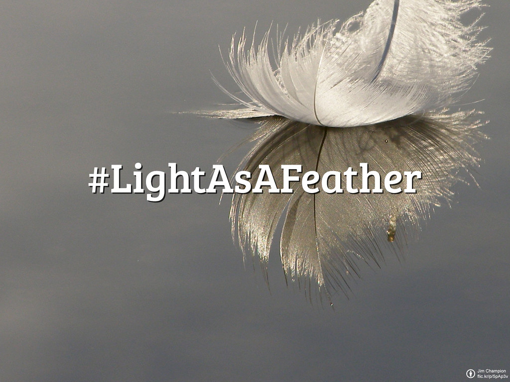 #FlickrFriday: #LightAsAFeather | Freedom would be one of the first attributions to this feeling.