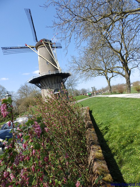 20-04-2013 Geldermalsen 33 km  (97)