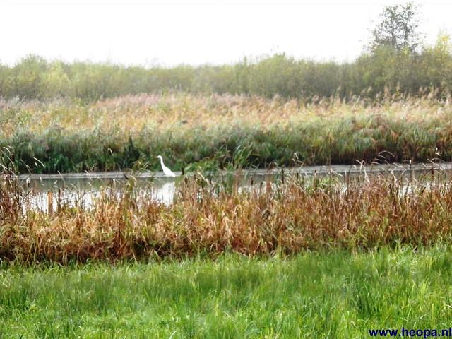 03-11-2012 Amerongen 30 Km (16)