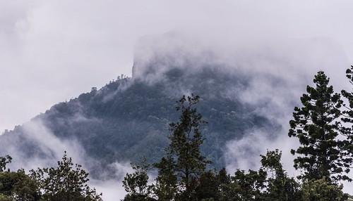 mountain clouds jalgumbun mountlindesay australianmountains nsw northernrivers richmondvalley macphersonrange australia australianweather australianlandscape