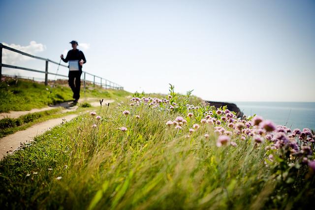 Nordic Walking Fence Friday