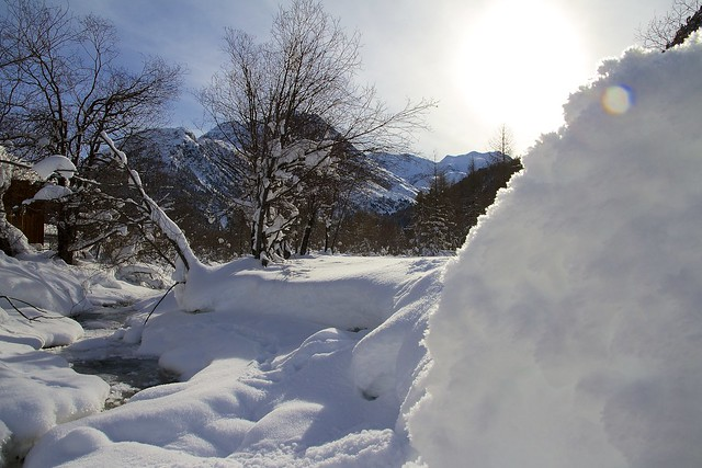 January sun and snow