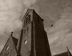 Baltinglass Abbey #6