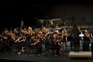Youth Philharmonic
