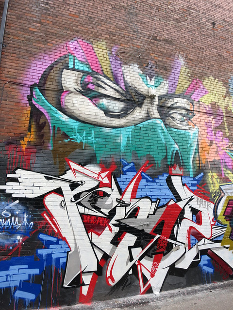 Trinity Bellwoods Ninja Mural
