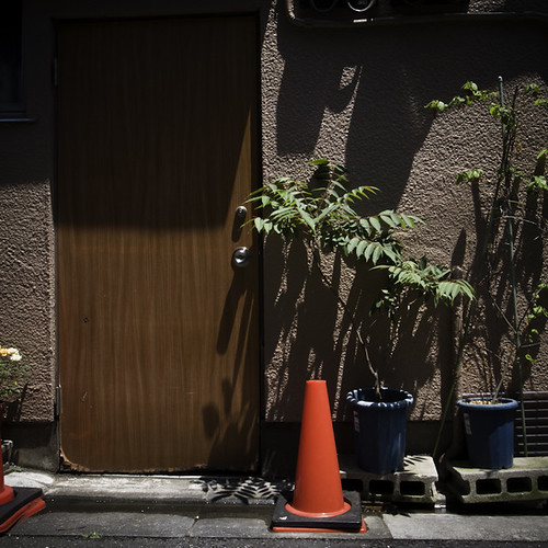 One Door, One Cone Three Plants, Sunamachi Ginza | by jacob schere [in the 03 strategically planning]