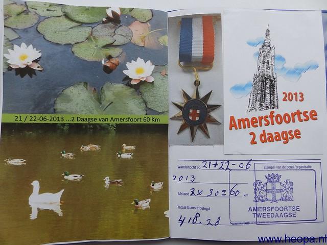 22-06-2013 Amersfoort  30 Km  (99)
