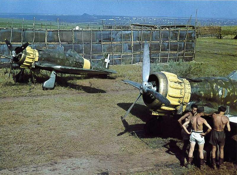 Macchi C. 200 Venäjän edessä