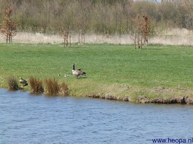 20-04-2013 Geldermalsen 33 km  (130)