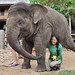 Elephant Nature Park by Thailande-Asie